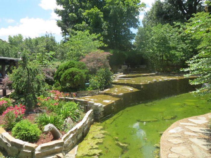 Wide shot of gardens