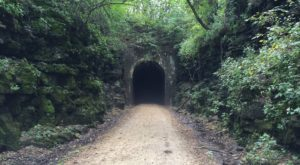 You've Never Experienced Anything Like This Epic Abandoned Railroad Hike In Wisconsin