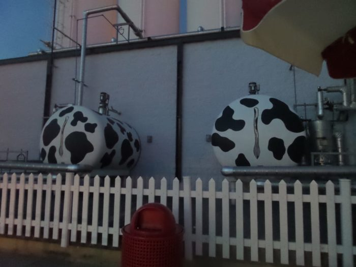 One visit to this store, and you will know they are all about their cows.