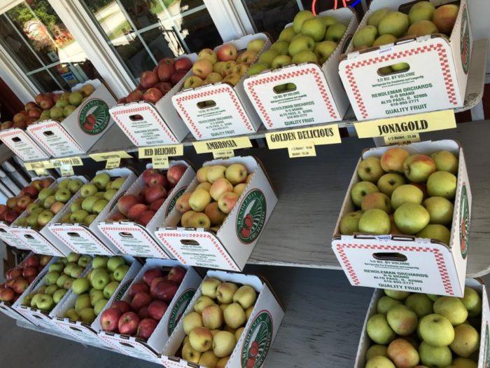 4. Pick apples.