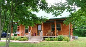 These 10 Cozy Cabins Are Everything You Need For The Ultimate Fall Getaway In Illinois