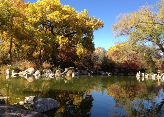 The biopark in albuquerque new mexico is otherworldly beautiful for Botanical gardens albuquerque new mexico