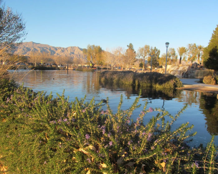 Aliante Nature Discovery Trail (North Las Vegas)