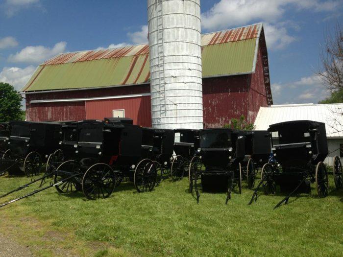 Amish Bus Tours Ohio
