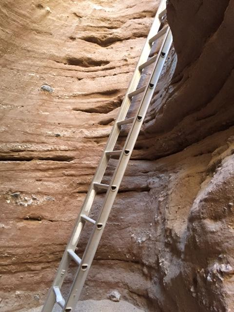 A series of ladders take you up through the slot canyon - this is why the trail is called Ladder Canyon Trail.