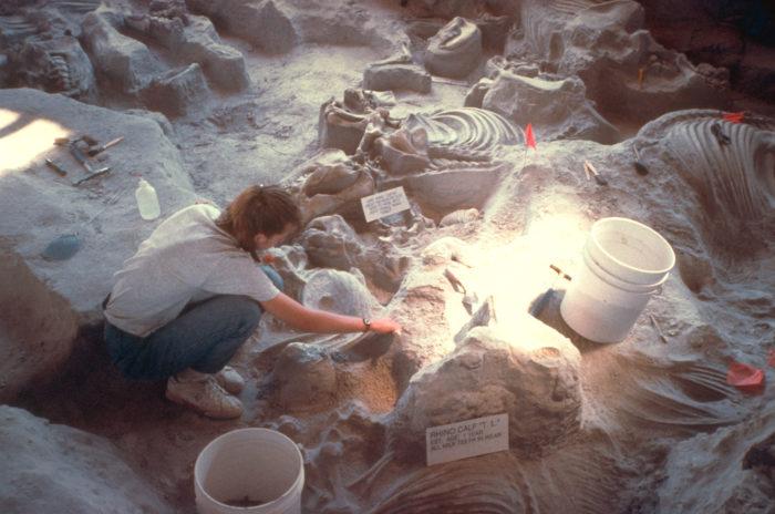 8. Ashfall Fossil Beds, Royal