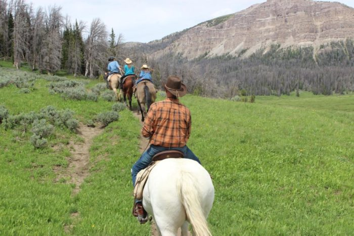 The resort is home to 40 steeds for riders of all levels. You can enjoy trail riding through the gorgeous Shoshone National Forest.