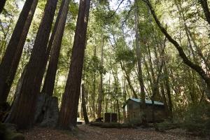 4. Big Basin Tent Cabins: Boulder Creek
