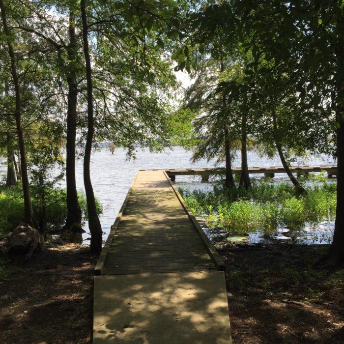 7. Lake D'Arbonne State Park, 3628 Par Rd 4410, Farmerville