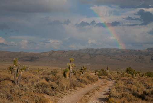 Corn Creek Nature Trail (Desert National Wildlife Range)
