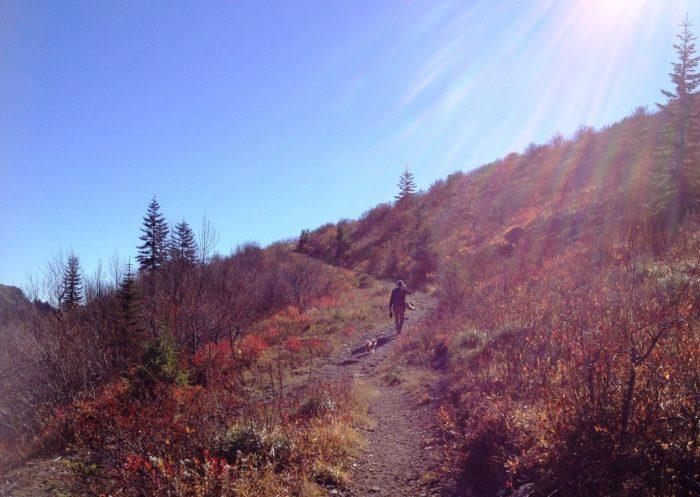 4. Silver Star Mountain, Columbia Gorge area