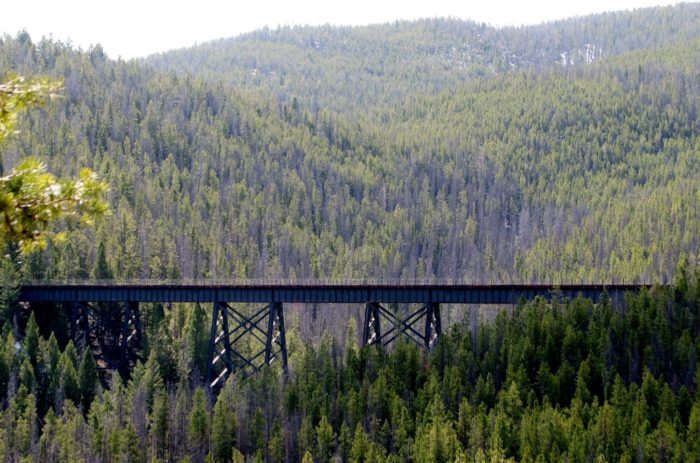 The trestle rises 130 feet above the valley floor.