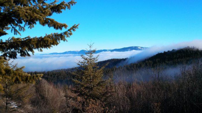 3. Iller Creek Trail, Spokane
