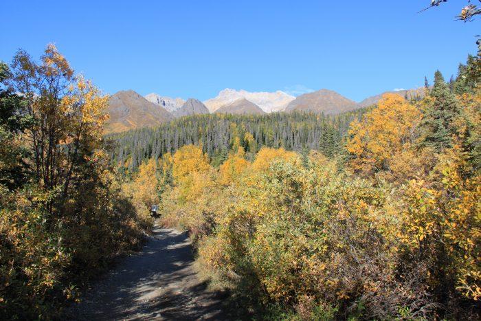fall Flickr - Wrangell-St. Elias National Park & Preserve