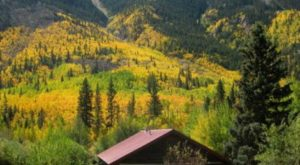 These 11 Cozy Cabins Are Everything You Need For The Ultimate Fall Getaway In Colorado