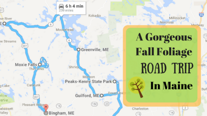 Take Ths Gorgeous Fall Foliage Road Trip To See Maine Like