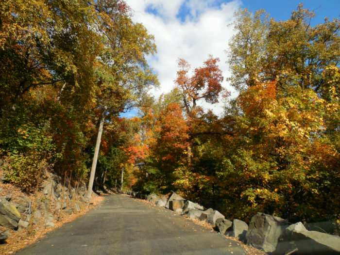 I absolutely can't get enough of this road in the autumn, and I think you'll feel the same way. New York Magazine even named it one of the best bike rides in the tri-state area.