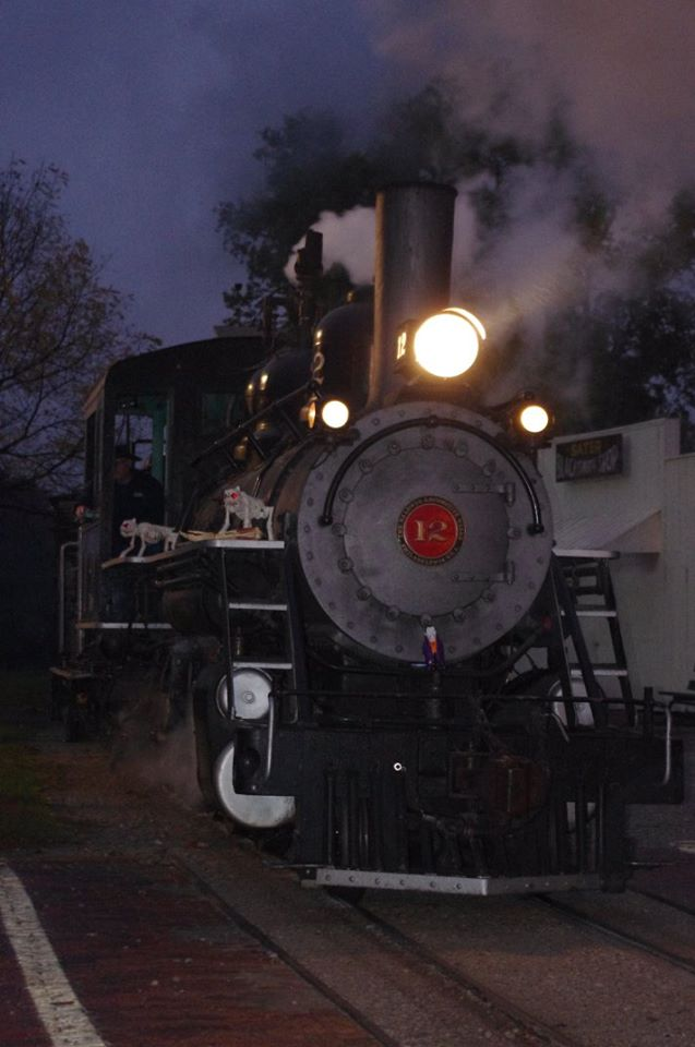 The railroad has steam locomotives and railroad cars, and you'll enjoy a scenic ride, with plenty of sights and sounds along the way.