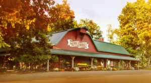 These 10 Charming Apple Orchards In Indiana Are Picture Perfect For A Fall Day