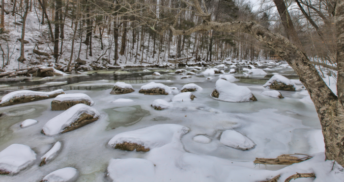 The 260-acre preserve is a spectacular sight in all seasons.