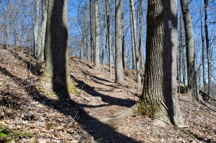 You can take the Falling Branch Trail to Kilgore Falls. The entire area of Falling Branch Trail was once a meeting place for Susequhannock Indians. The land was relatively unknown until the state purchased it in 1993.