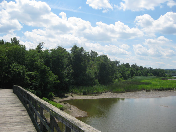 You access Kingman Island by crossing the Kingman Island Boardwalk, a wooden boardwalk bridge across the river.