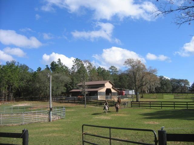 1. Lady Hawk Farm, Inverness