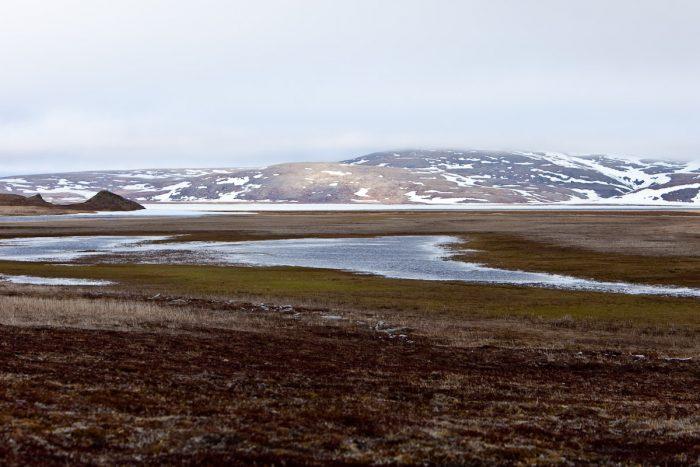 land Flickr - jomilo75