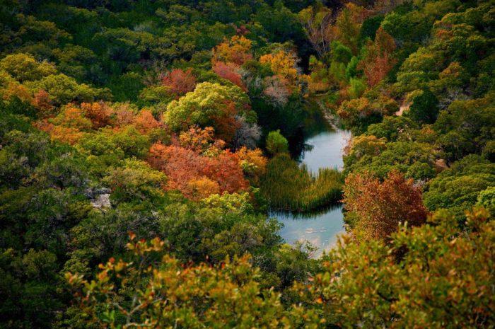 Houston Texas Natural Park