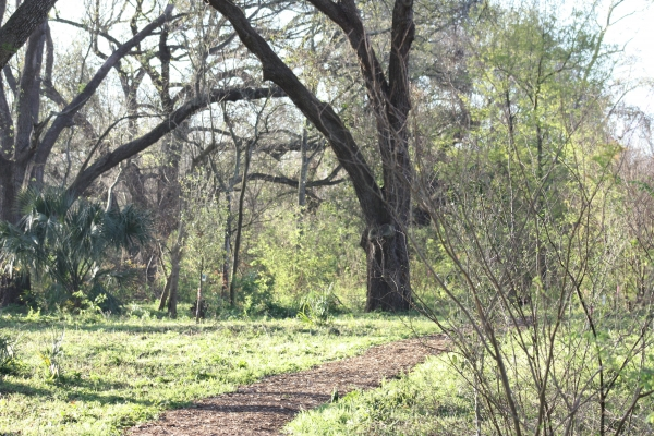This 60 acre forest is filled with trails and overlooks for a beautiful walk with friends...