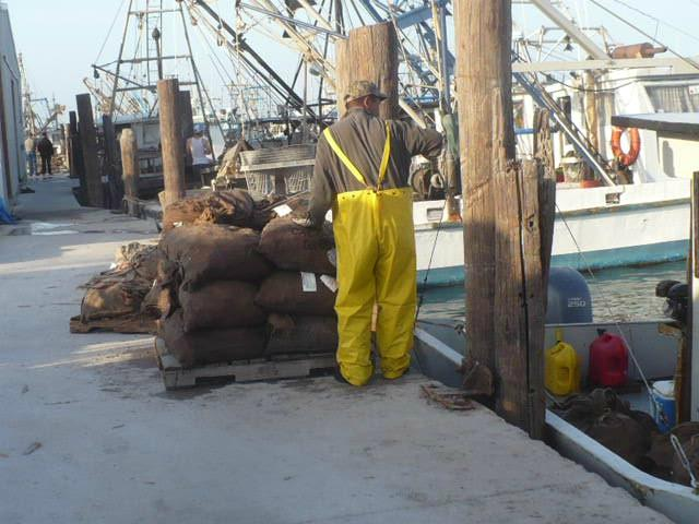 This is a working pier, where you'll see fishermen unloading shrimp, oysters and fish.