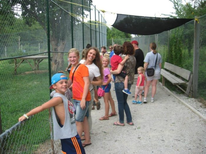 Because the park is run by volunteers (and dedicated community members), it is only open to the public on weekends, unless otherwise scheduled in advance.