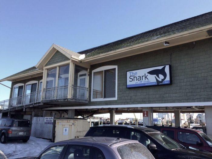 7. Shark on the Harbor, Ocean City