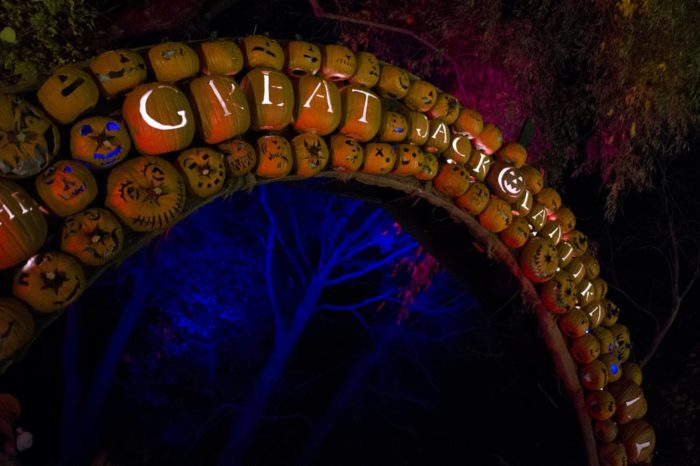 Throughout the month of October and November you can visit the historic site to see it transformed into a complete paradise made up of 7,000 illuminated pumpkins.