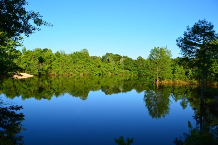 6. Bogue Chitto State Park - Franklinton