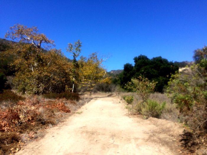 8. Little Sycamore, Laguna Coast Wilderness Park