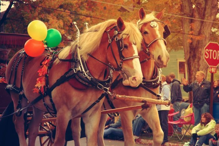 The town and surrounding area is also home to the nationally recognized Autumn Glory Festival. From October 12-16, parades, concerts, craft vendors and more bring the town to life in celebration of autumn.