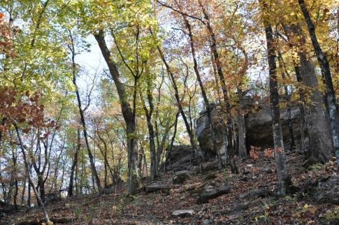 Redbud Valley Nature Preserve, Tulsa