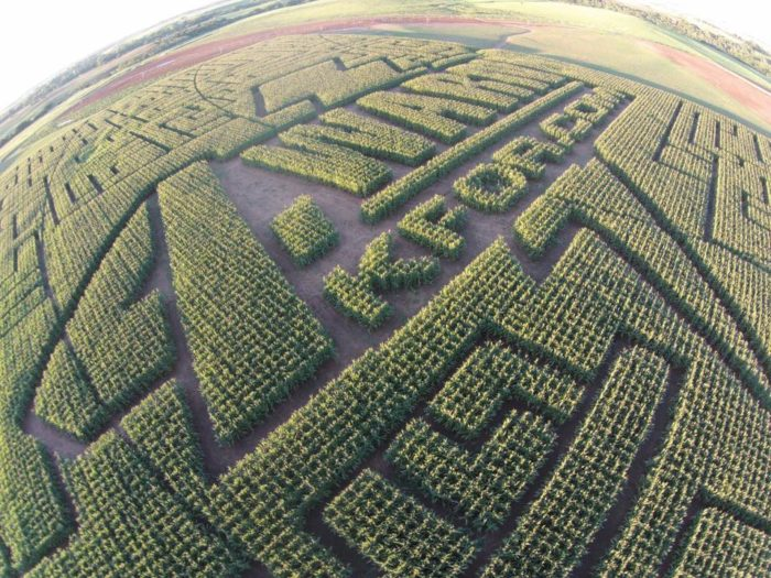 Every year P Bar Farms designs a new theme for the corn maze. The 2016 theme is CORN-A-DO and partnered with Channel 4 - KFOR.com.