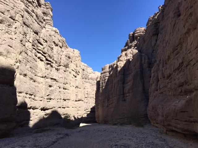 You'll enter this gorgeous slot canyon, where your journey into this oasis really gets exciting.