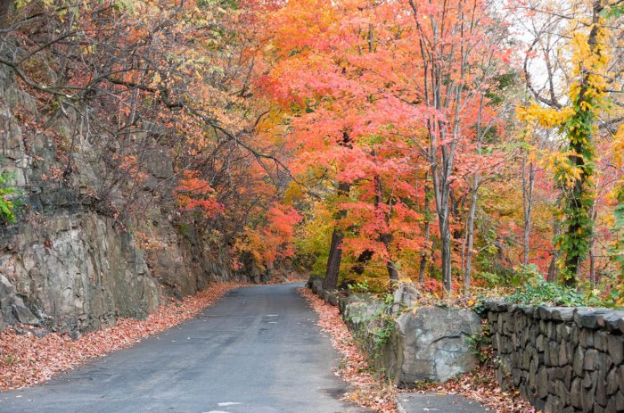Henry Hudson Drive Offers The Best Fall Foliage In New Jersey