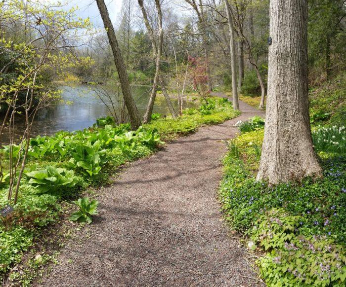 Hike The Leonard J Buck Gardens In Far Hills New Jersey