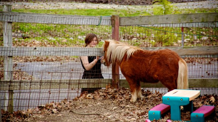 They even have a petting zoo.