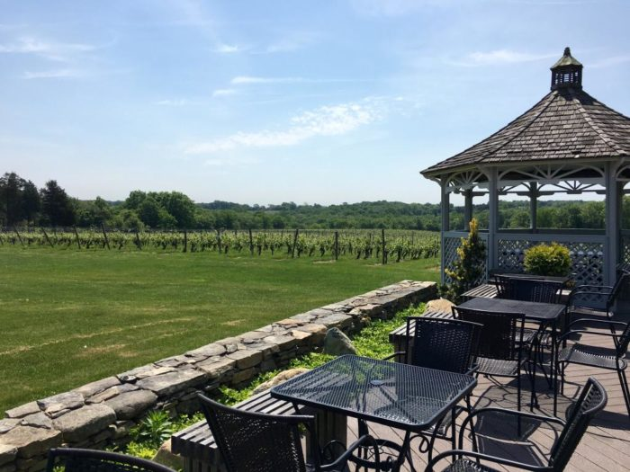 Take a break from fishing and seaside activities to visit Stonington Vineyards. Overlook the 58-acre property as you taste wine on the gazebo and check out the art gallery. This is the perfect place for a picnic!