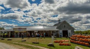 These 11 Charming Pumpkin Patches In Maine Are Picture Perfect For A Fall Day