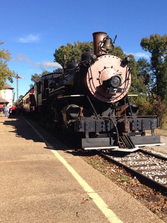 The train ride lasts about 4.5 hours, departing from the Palestine Depot at 10:15 AM and returning at approximately 2:45 PM.