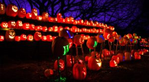 A Truly Epic Jack O'Lantern Trail Is Coming To New Jersey And You Need To See It