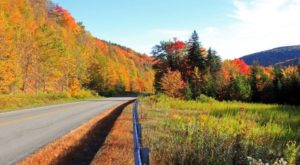 7 Country Roads In West Virginia That Are Pure Bliss In The Fall
