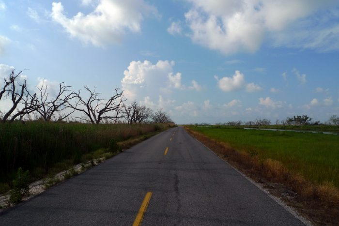 There is just one road to Cocodrie, and water surrounds.