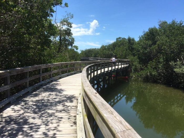 The park contains trails for hiking and biking, picnic tables, and a long, winding boardwalk for wildlife viewing.